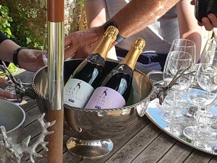 1066 English Wine Tour Sussex